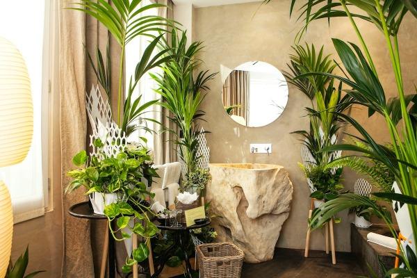 Les plantes vertes dans la chambre annikapanika - Plante a mettre dans une chambre ...