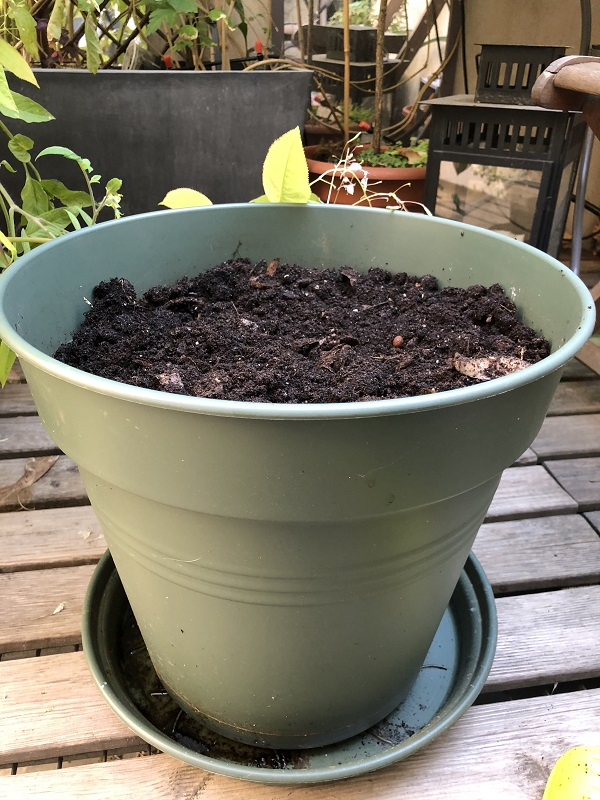 Compost en appartement